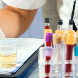 Harrington Onsite Drug Testing - Laboratory Testing - 242