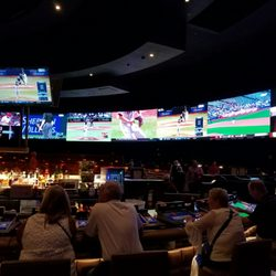 ceasers palace sportsbook brovato