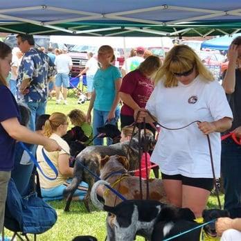 Columbus Dog Connection Reviews
