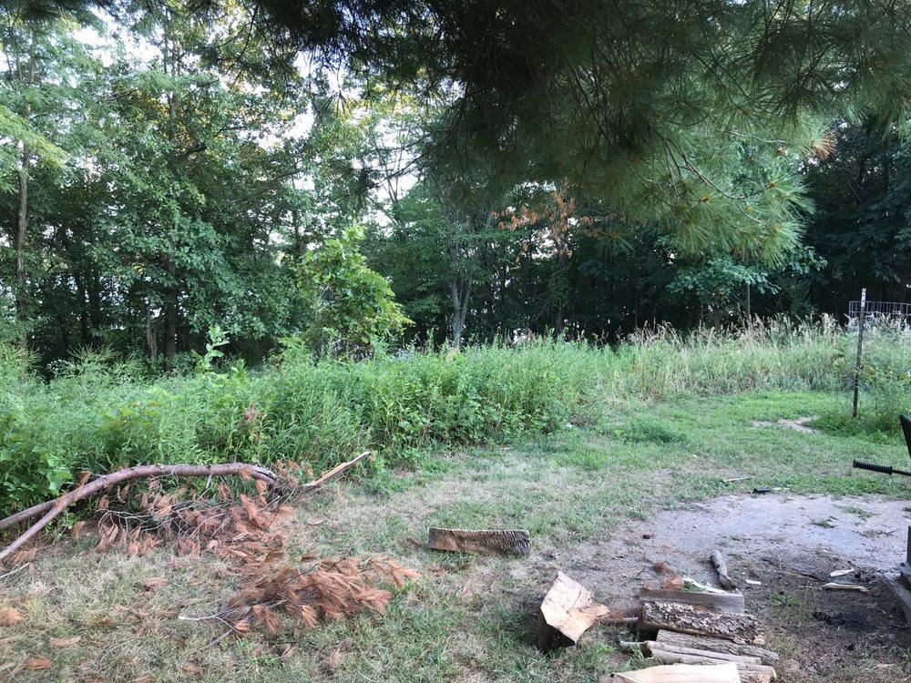 Clinton State Lake Recreation Area: 7251 Ranger Rd, De Witt, IL