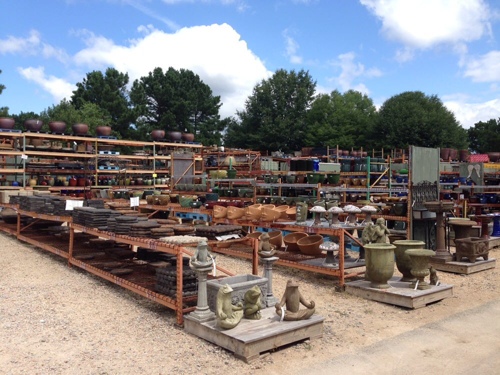 Types 18 Market Imports Raleigh