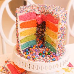 Top 10 Best Rainbow Cake In New York NY