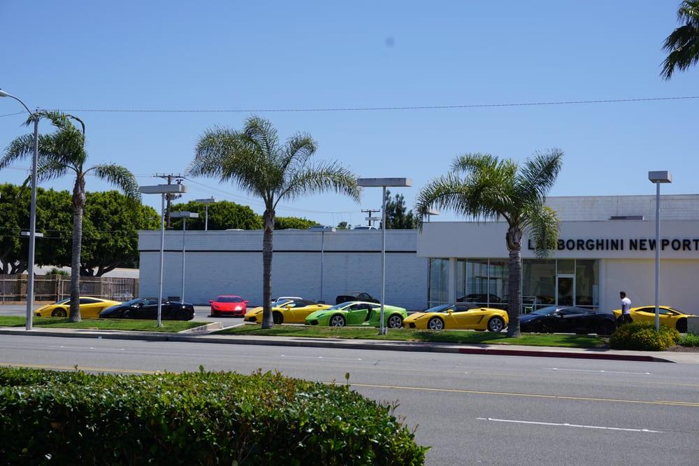 Lamborghini Newport Beach 43 Photos Amp 24 Reviews Car