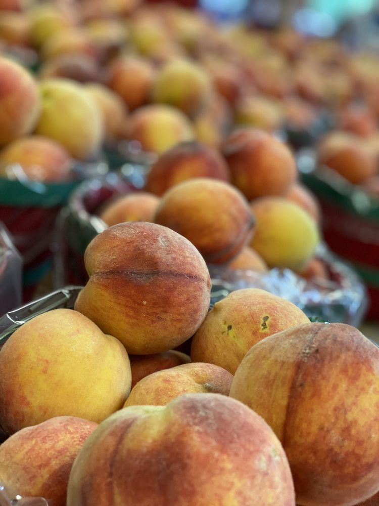 R & A Orchards: 5505 Hwy 52 E, Ellijay, GA