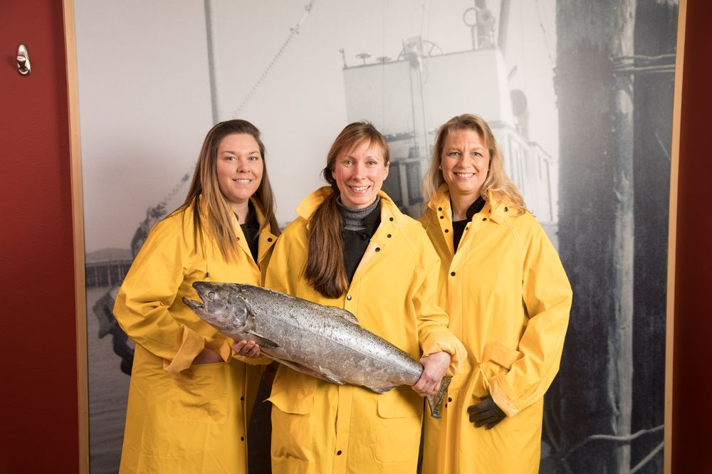 SeaBear Wild Salmon: 605 30th St, Anacortes, WA