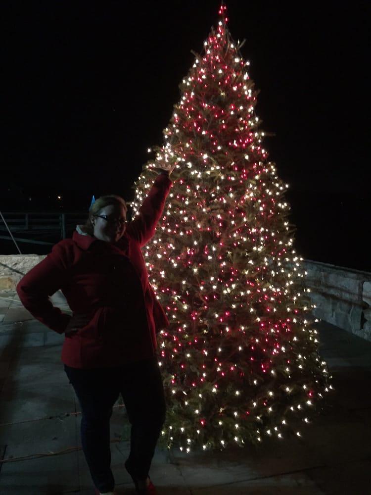 J C Lobster Pot Their Christmas Tree o...