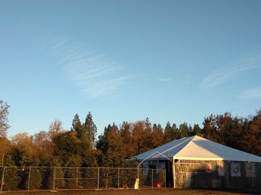 Noble Trees: 2590 Pleasant Hill Rd, Pleasant Hill, CA