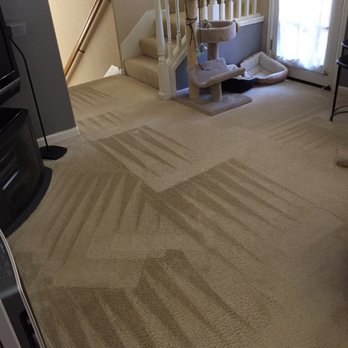 Stay Dry Go Green Organic Carpet Cleaning 80 Photos 131