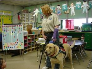 Service Dog Training The Woodlands Tx