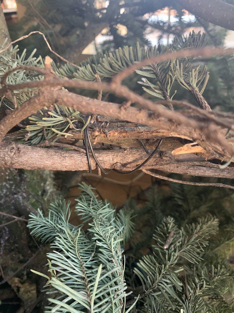 Seasonal Adventures Pumpkin Patch & Trees