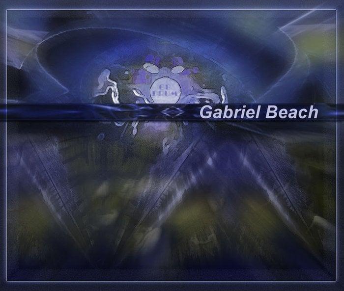 Gabriel Beach Master Percussionist: Indianapolis, IN