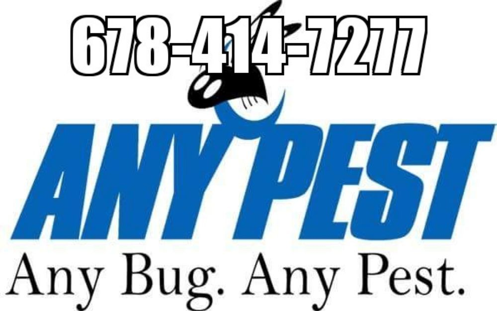 Any Pest
