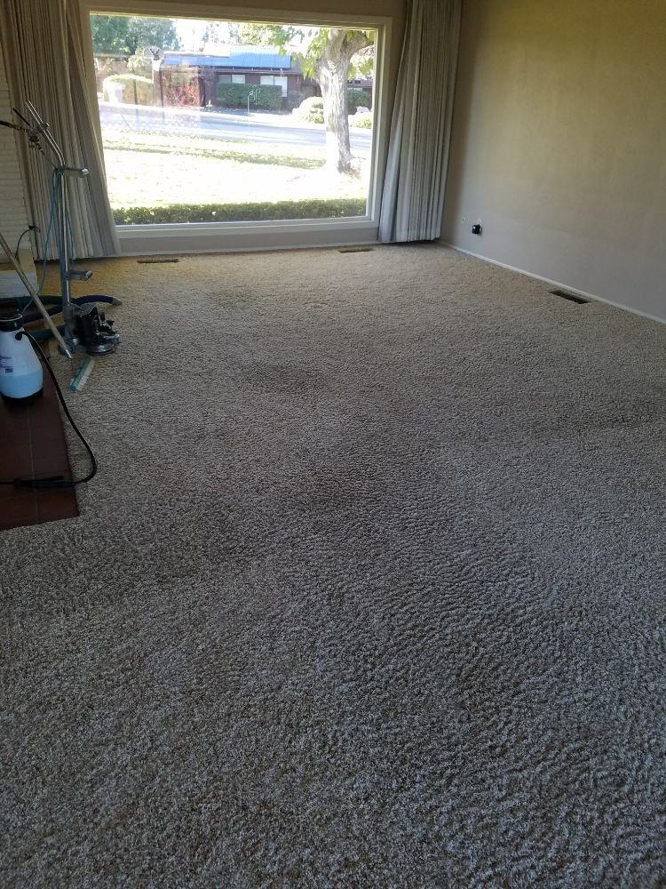 New Season Carpet Care: 360 Vermont St, Gridley, CA