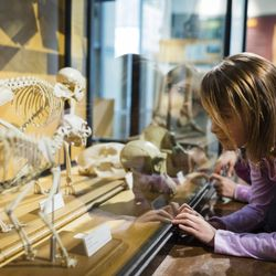Top 10 Best Fun Things To Do With Kids Near Lincoln Park Chicago