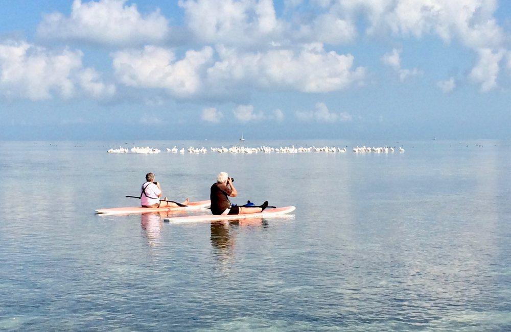 Keys Boat Tours: 38801 Overseas Hwy, Big Pine Key, FL