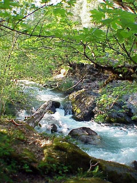 Thompson Creek Lodge: 52431 Hwy 96, Seiad Valley, CA