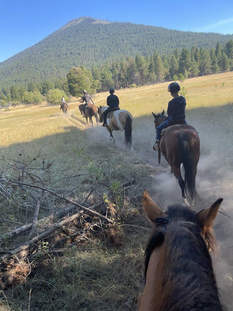 Black Butte Stables: 13892 Hawks Beard, Sisters, OR