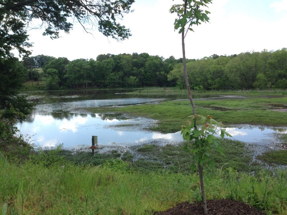 Lake Conestee Nature Park