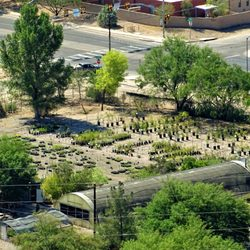 Photo Of Desert Survivors Native Plant Nursery Tucson Az United States View
