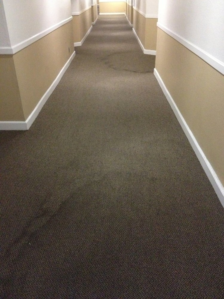 Hallway After Carpet Cleaning Hope You Have A Good Immune System Yelp