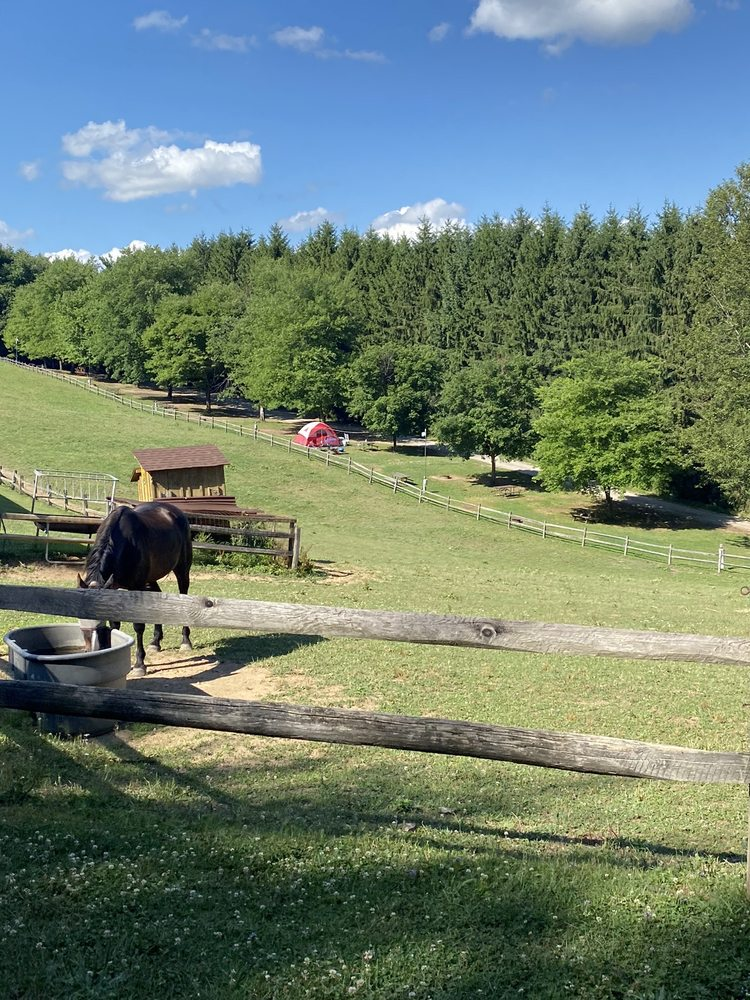 Bear Run Campground: 184 Badger Hill Rd, Portersville, PA