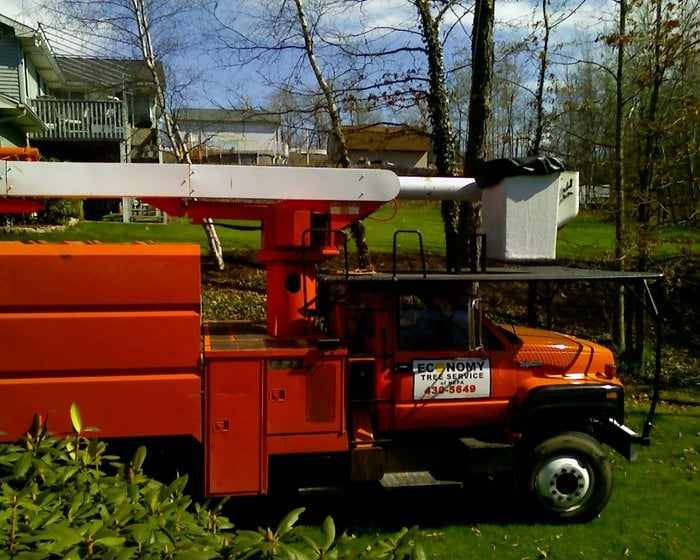 Photo of Economy Tree Service Nepa: Dickson City, PA