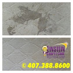Einstein Carpet Care   Carpet Cleaning   1279 Winter Garden Vineland Rd,  Horizons West / West Orlando, Winter Garden, FL   Phone Number   Yelp