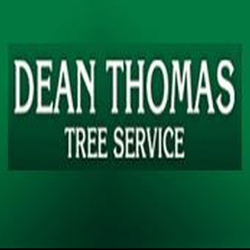 Photo Of Dean Thomas Tree Service Pittsburgh Pa United States