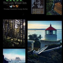 Photo Of Lost Whale Bed Breakfast Inn Trinidad Ca United States