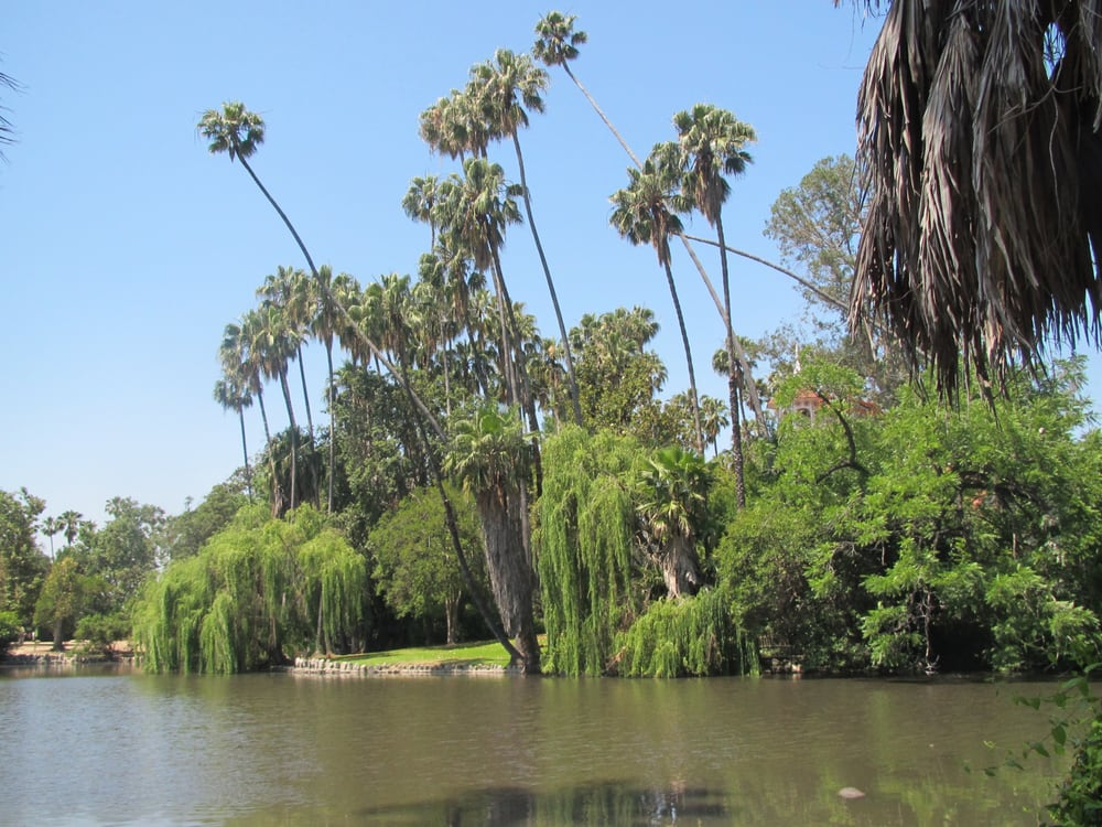 Photos For Los Angeles County Arboretum And Botanic Garden Yelp
