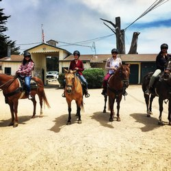 Pebble Beach Equestrian Center 108 Photos 70 Reviews Horseback