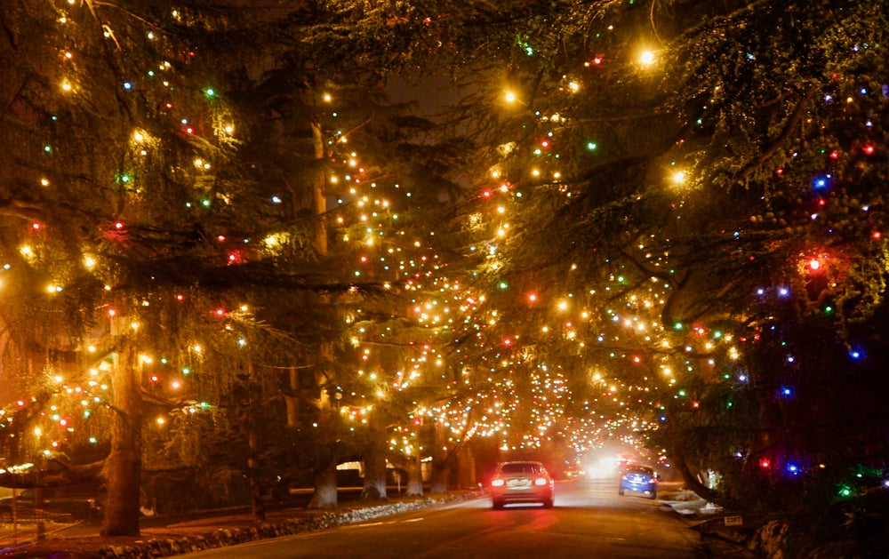 Photo of Christmas Tree Lane - Altadena, CA, United States. Each year over - Each Year Over 140 Deodar Trees Are Filled With Lights On Christmas