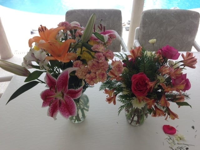 Season flower specials starting at $! Flowers available for delivery today to celebrate a birthday, Mother's Day and more!