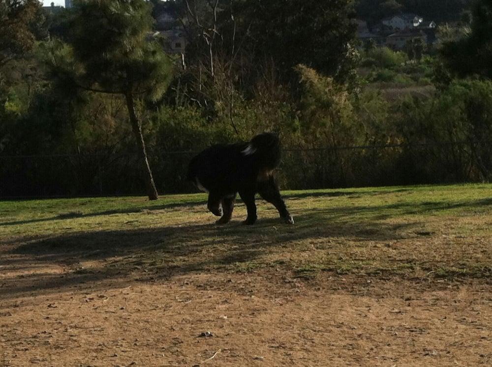 Rancho Bernardo Dog Park