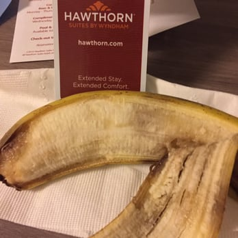 Hawthorn Suites By Wyndham Livermore 26 Photos 55 Reviews Hotels 1700 N Livermore Avenue Livermore Ca Phone Number Yelp