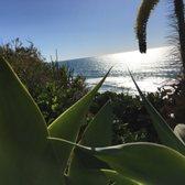 Photo Of Los Arboles Apartments   Del Mar, CA, United States. Walk To