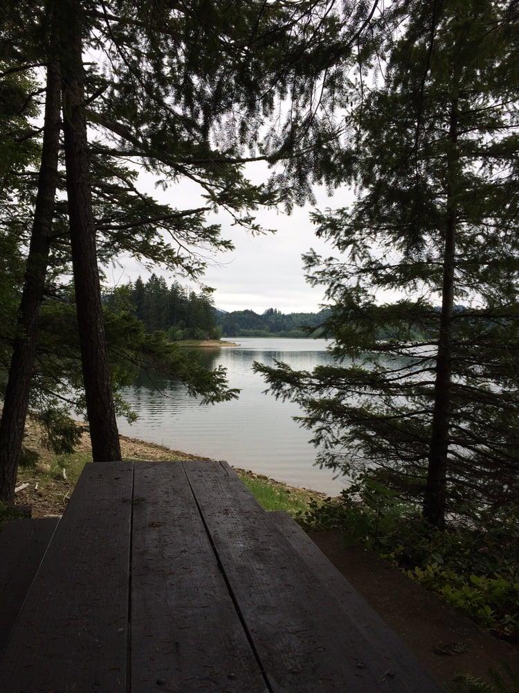 Alder Lake Park Parks Eatonville Wa Reviews