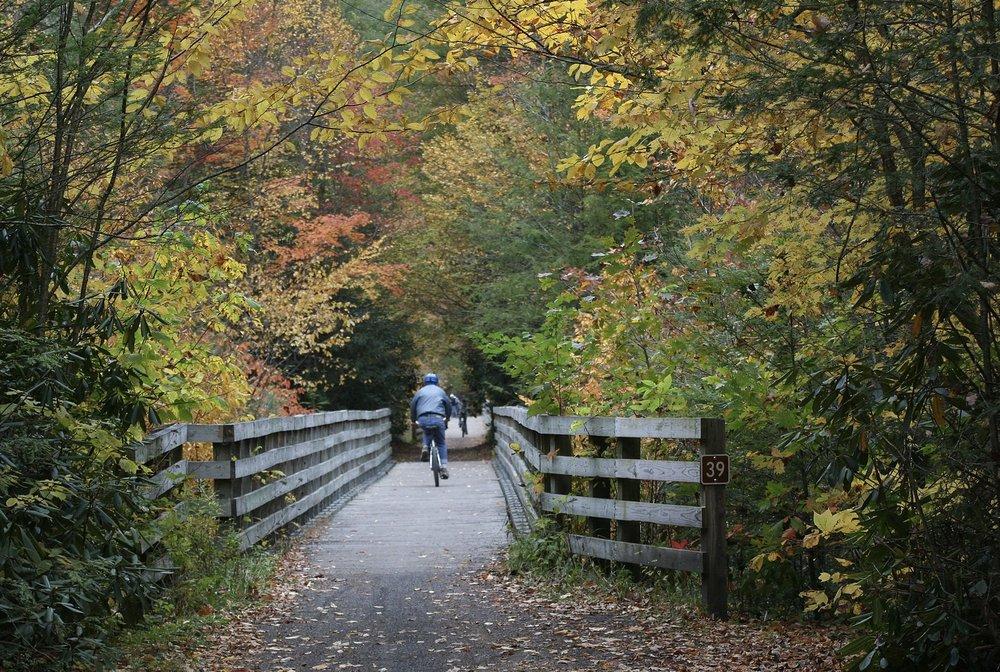 Social Spots from Creeper Trail Bike Rental & Shuttle