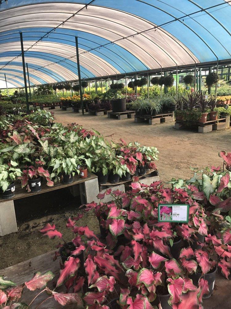 Houston Plants & Garden World: 16726 North Fwy, Houston, TX
