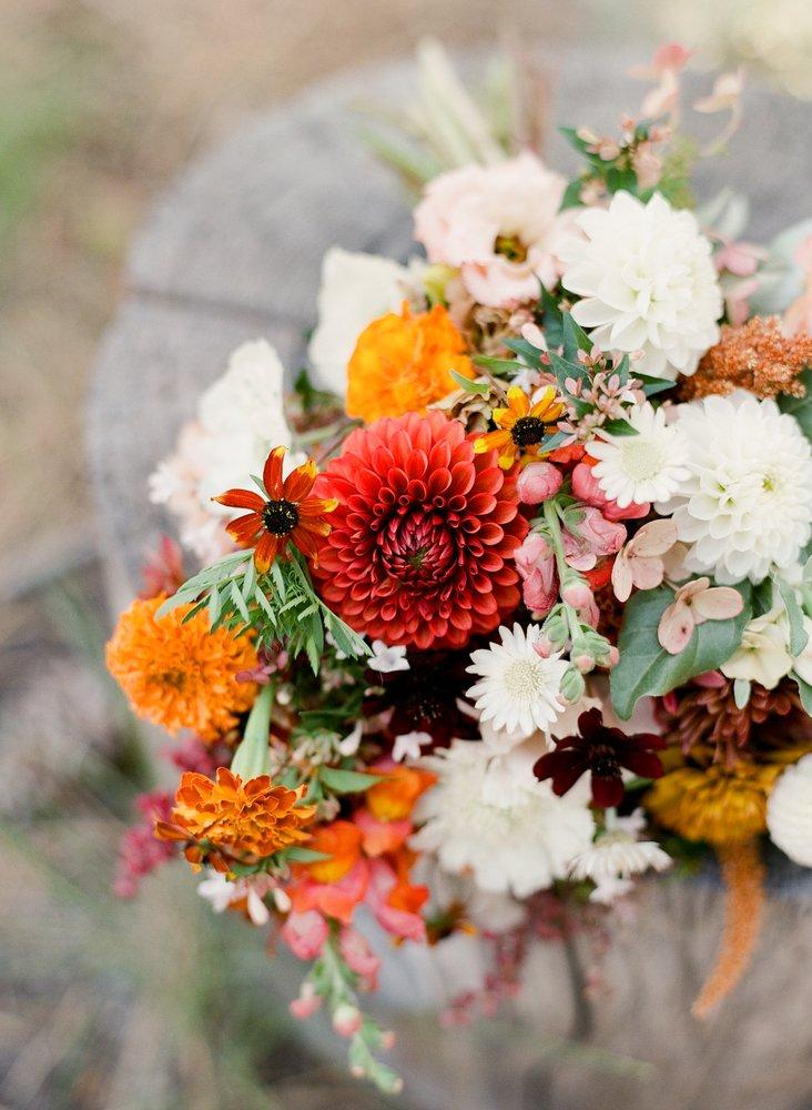 Sweet Roots Farm: 14805 Auburn Rd, Grass Valley, CA