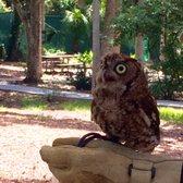 Foto Zu Central Florida Zoo U0026 Botanical Gardens   Sanford, FL, Vereinigte  Staaten.