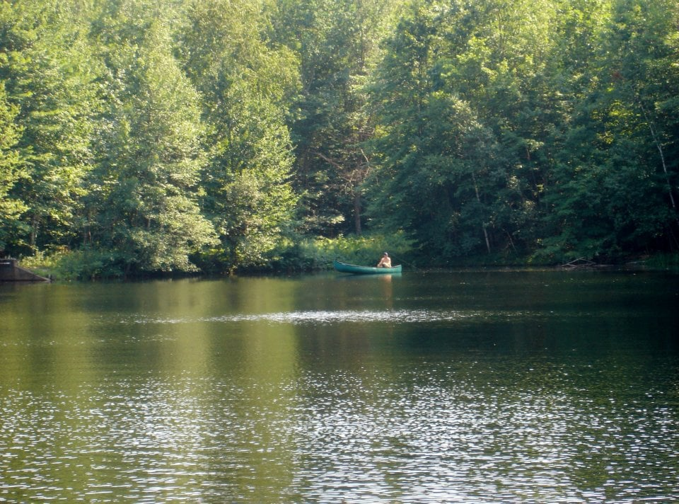 Fishing on our private 3 acre fresh water stream fed pond for Private fishing ponds near me