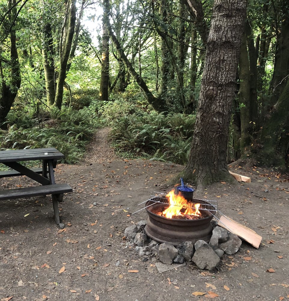 Secret Camp Rv & Tent Park: 95614 Jerrys Flat Rd, Gold Beach, OR