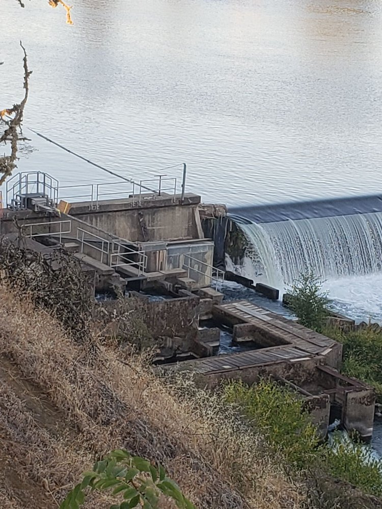 Winchester Dam and Fish Ladder: Roseburg, OR