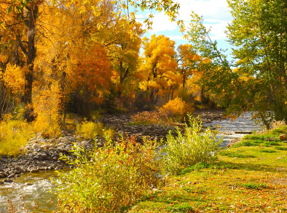 Spring Creek Campground and Trout Ranch: 257 Main Boulder Rd, Big Timber, MT