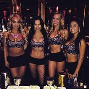 Shemales transexual bars clubs tampa