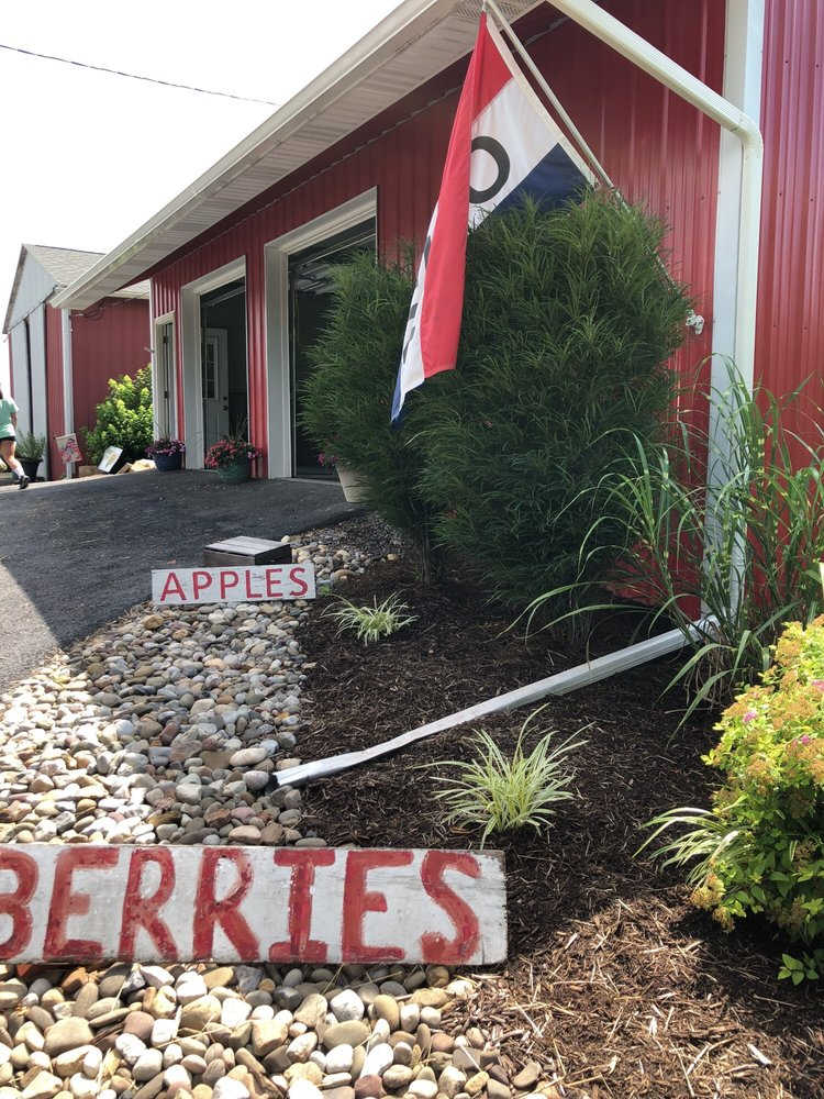 Stein's Farm Market: 1117 Chestnut Rd, Orwigsburg, PA