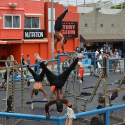 Photo Of Muscle Beach Gym Los Angeles Ca United States
