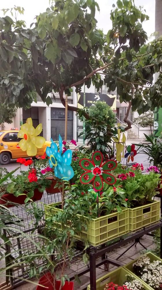 El Jardín Flores y Plantas: 25 de Mayo 887, Córdoba, X