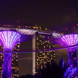 Gardens By The Bay New 2311 Photos 309 Reviews Botanical